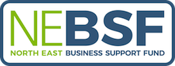 North East Business Support Fund logo